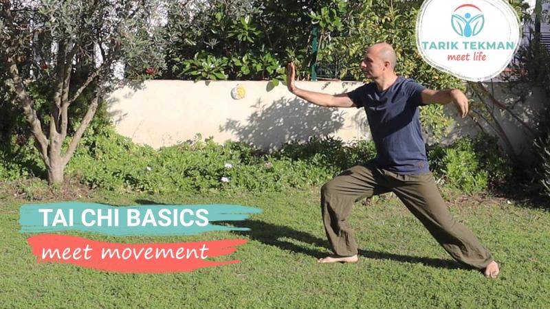 Tai Chi Basics - meet movement